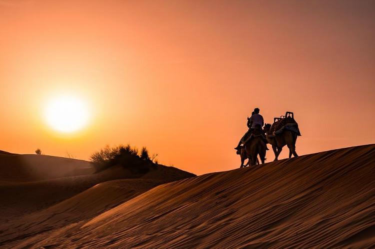 사막사파리2.jpg