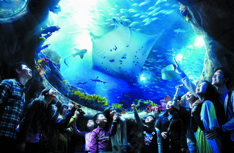 Aqua City - Grand Aquarium (2).jpg