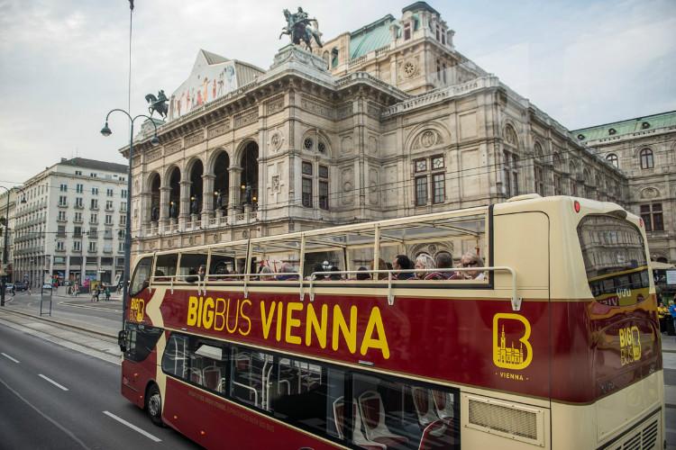 비엔나 빅버스5 - 복사본.jpg